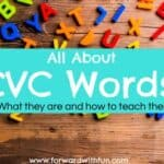 Everything you need to know about CVC Words